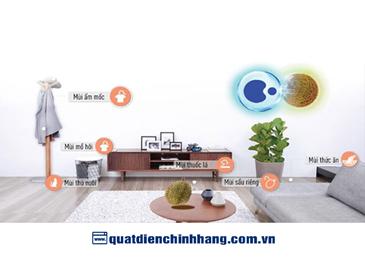 Ô nhiễm không khí trong nhà và những điều bạn chưa biết